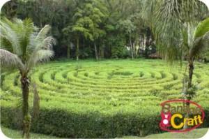 parque malwee - jaraguá do sul - sc