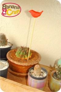 cactos - pássaro vermelho
