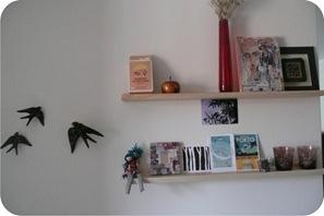andorinhas na parede