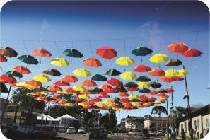 umbrellas in the sunny sky